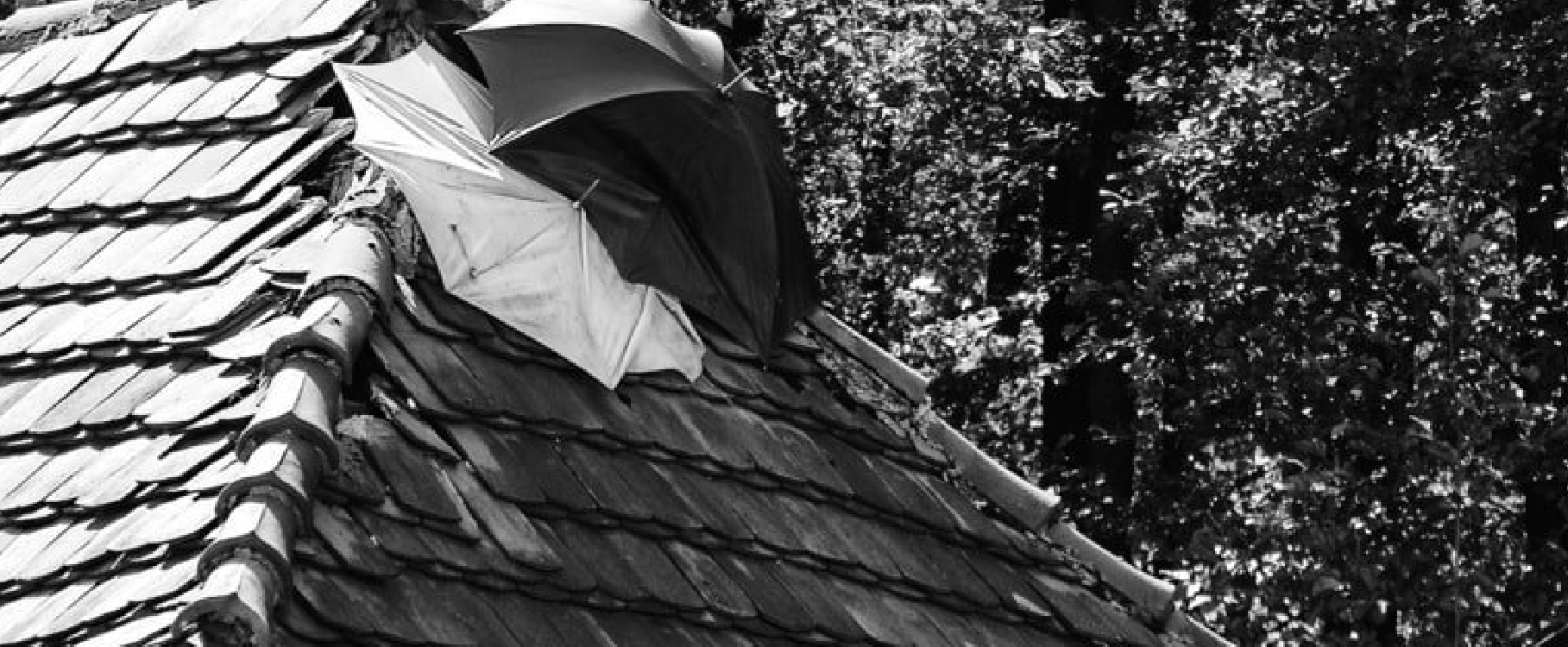 Blog 2roofing image